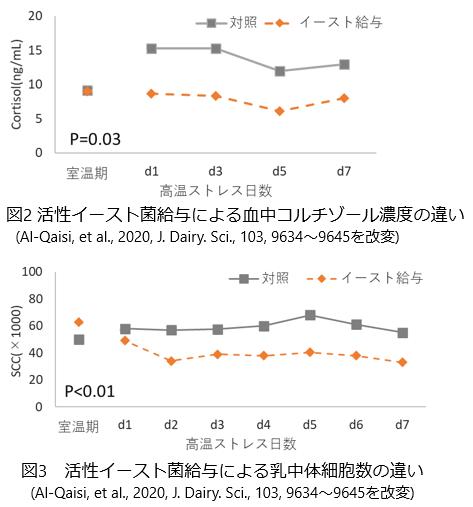 活性イースト菌の牛の高温・寒冷ストレスに対する効果は?